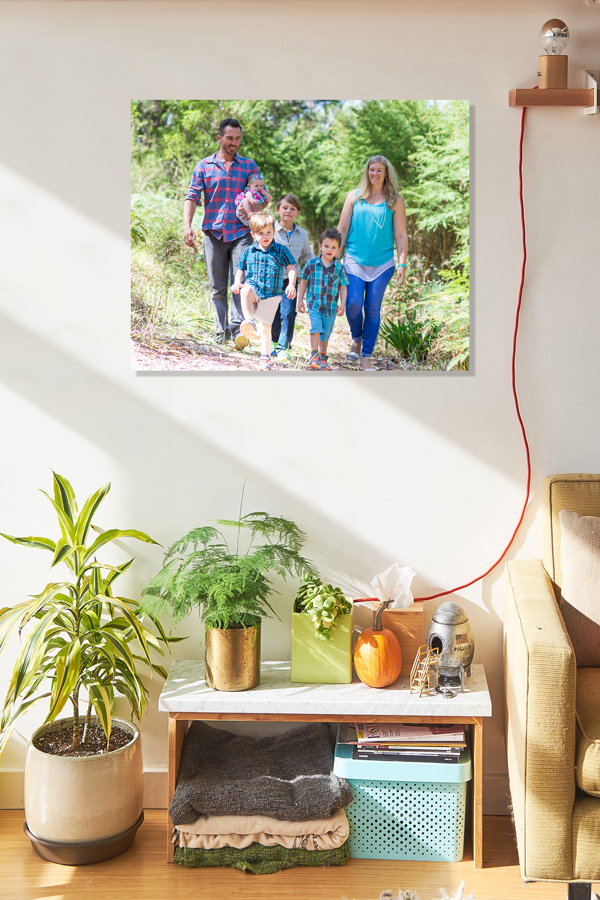 FR-Living-room-Earthy