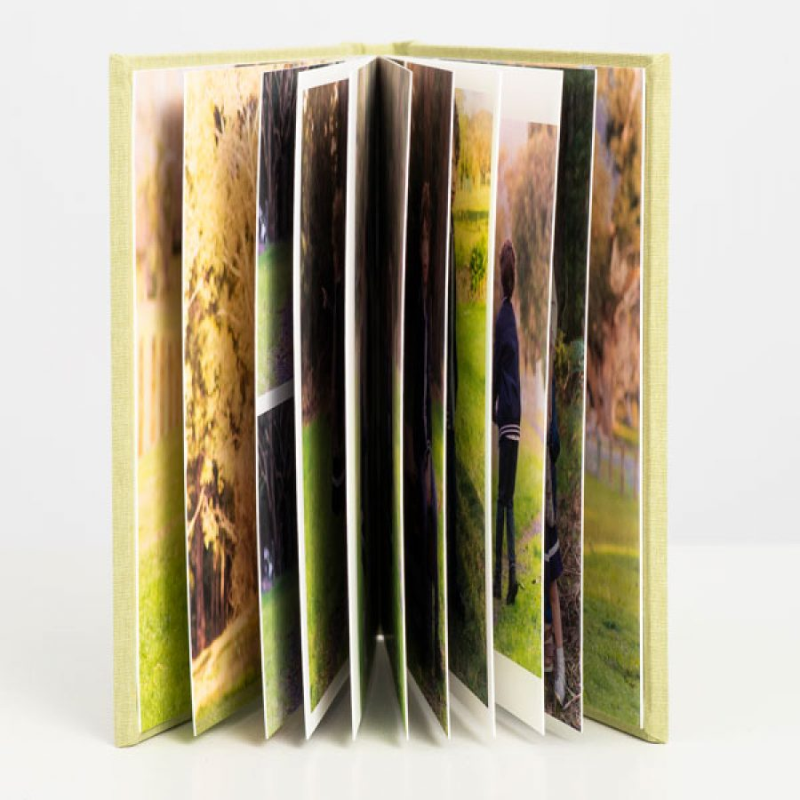 Fine Art Album